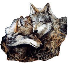 loups-1 dans DUEL du I